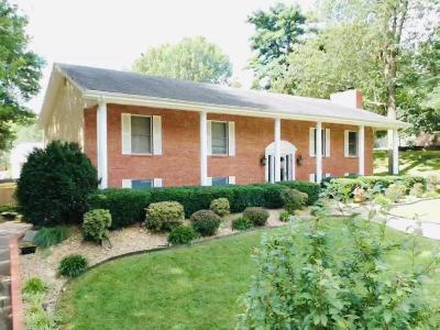 Monett Single Family Home For Sale: 367 North Belaire Street