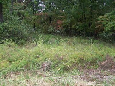 Branson Residential Lots & Land For Sale: 242 Rocky Point Loop