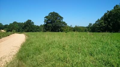 Noel MO Residential Lots & Land For Sale: $1,400,000