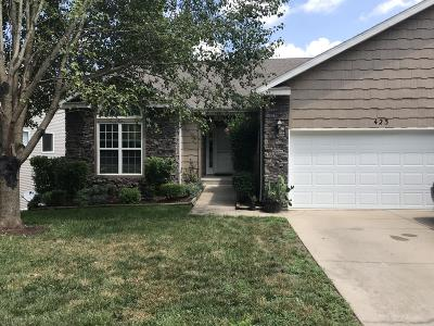 Branson  Condo/Townhouse For Sale: 423 Cozy Lane Lane