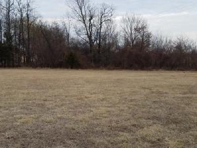 Polk County Residential Lots & Land For Sale: 5481 Anita Avenue