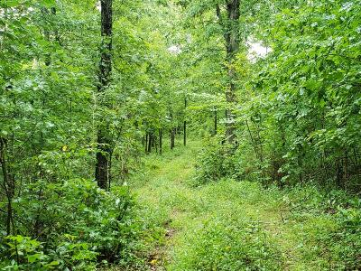 Mountain Grove MO Residential Lots & Land For Sale: $55,000