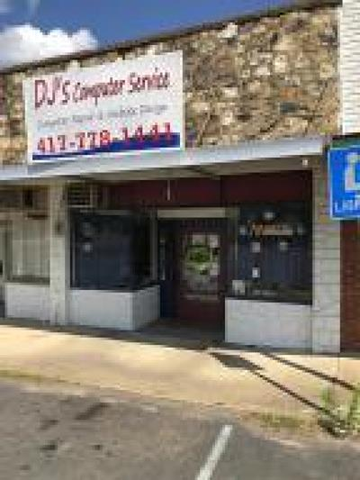 Commercial For Sale: 21 Court Square