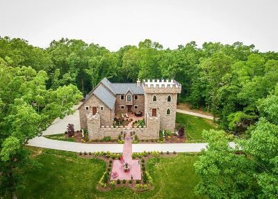 Stone County Single Family Home For Sale: 125 Sky Castle Drive