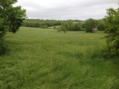 Cedar County Residential Lots & Land For Sale: North Street