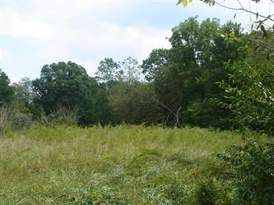 Ozark Residential Lots & Land For Sale: Tba North 6th Avenue
