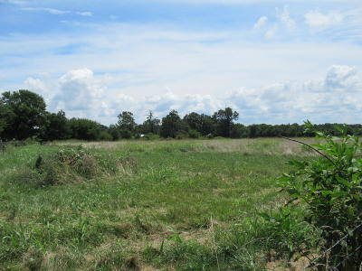 Rogersville Residential Lots & Land For Sale: Tbd State Highway 125 North