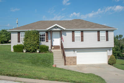 Ozark Single Family Home For Sale: 1307 South 14th Street