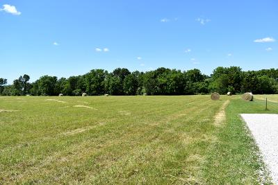 Rogersville Residential Lots & Land For Sale: Tract 6 South Zion Lane