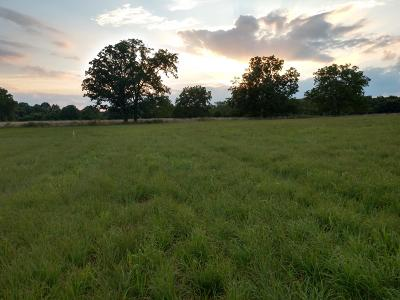 Rogersville Residential Lots & Land For Sale: Tract 2 State Hwy U