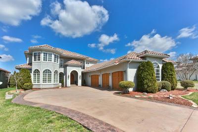 Ozark MO Single Family Home For Sale: $660,000