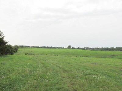 Ozark Farm For Sale: Tbd Kentucky Road