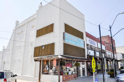 Polk County Commercial For Sale: 117 - 121 South Main Avenue