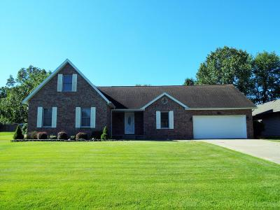 Hollister MO Single Family Home For Sale: $269,900
