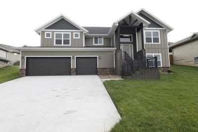 Nixa MO Single Family Home For Sale: $289,900