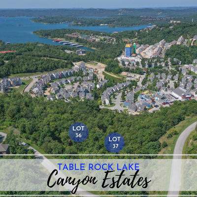 Branson  Residential Lots & Land For Sale: Lot 37 Canyon Estates