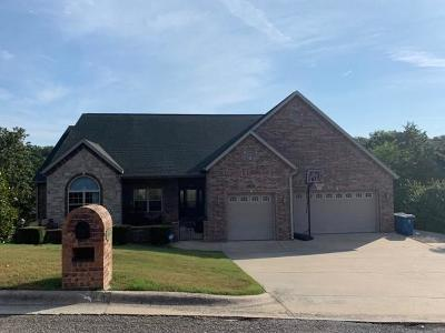 Branson Single Family Home For Sale: 135 Roark Hills Drive
