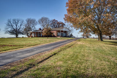 Republic Single Family Home For Sale: 3671 South State Hwy P