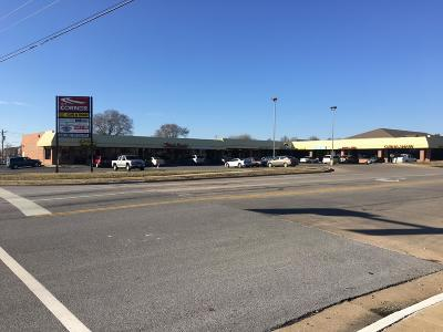 Greene County Commercial For Sale: 4177 South Scenic Avenue