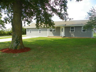 Fordland Single Family Home For Sale: 1679 Century Farm Road