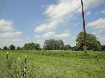 Strafford Residential Lots & Land For Sale: Tract B Holman Road