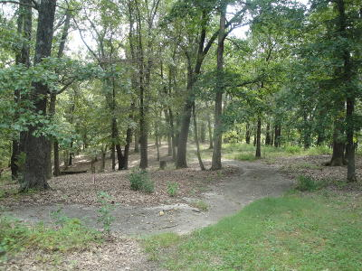 Strafford Residential Lots & Land For Sale: #14 Paradise Road