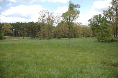 Residential Lots & Land For Sale: Tbd Laura Lane