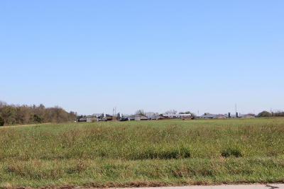 Newton County Farm & Ranch For Sale: 18452 Channing Lane