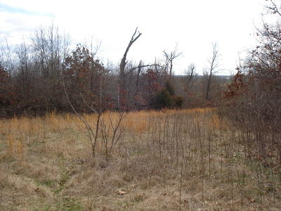 Seneca MO Residential Lots & Land For Sale: $109,900