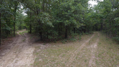 McDonald County Residential Lots & Land For Sale: 688 Adams Road