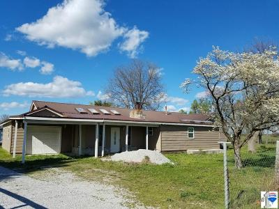 Jasper County Single Family Home For Sale: 8031 E Hwy 96