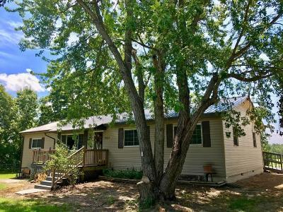 Seneca Single Family Home For Sale: 2963 Gum Road