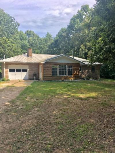McDonald County Single Family Home For Sale: 528 New Bethel Road