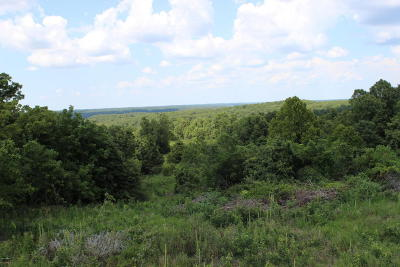 McDonald County Residential Lots & Land For Sale: 4458 Cowan Ridge Road