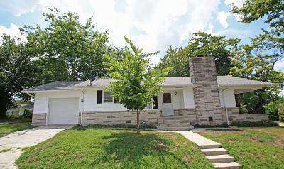 Galena Single Family Home For Sale: 1001 Chicago Avenue