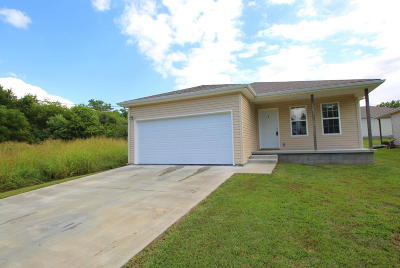 Carterville Single Family Home For Sale: 1203 E 5th Street