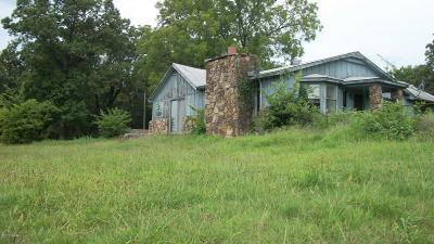 Newton County Single Family Home For Sale: 19532 Hwy 60