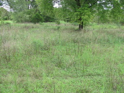 McDonald County Residential Lots & Land For Sale: 303 O'brien