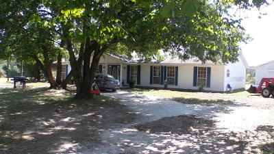 Anderson Single Family Home For Sale: 2480 Bunch Road