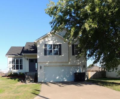 Webb City Single Family Home For Sale: 1117 Wilson Street