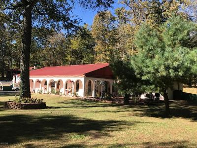 Newton County Single Family Home For Sale: 2111 Industrial Drive