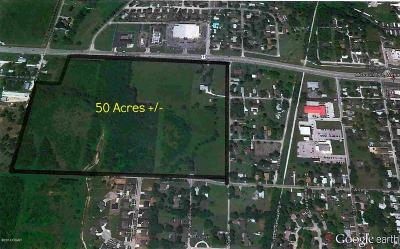 Jasper County Residential Lots & Land For Sale: 50 Acres 171 And Zigler