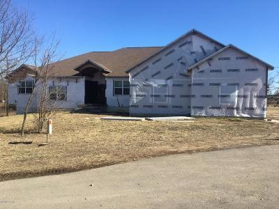 Joplin Single Family Home For Sale: 1421 Johnson Court