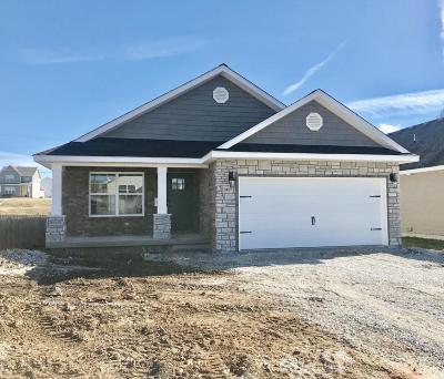 Joplin Single Family Home For Sale: 2417 Murphy Avenue