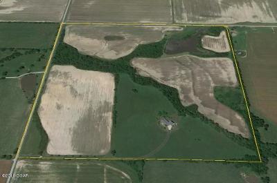 Jasper County Farm & Ranch For Sale: 9500 County Road 300