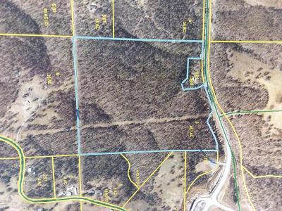 McDonald County Residential Lots & Land For Sale: Xxx Ee Highway