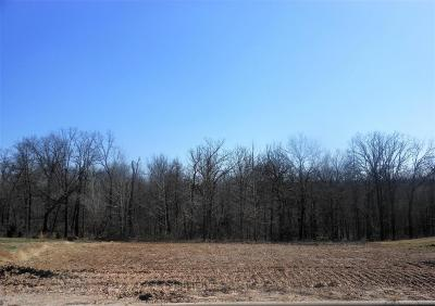 Barry County, Barton County, Dade County, Greene County, Jasper County, Lawrence County, McDonald County, Newton County, Stone County Residential Lots & Land For Sale: Lot 10 Jakes Circle