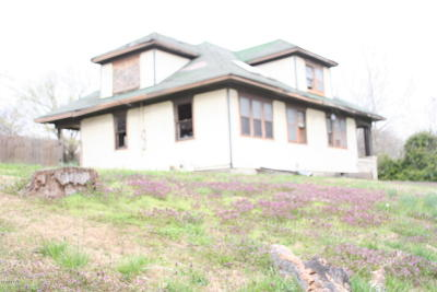McDonald County Single Family Home For Sale: 106 Apple