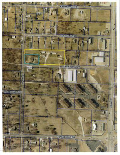 Joplin MO Residential Lots & Land For Sale: $250,000