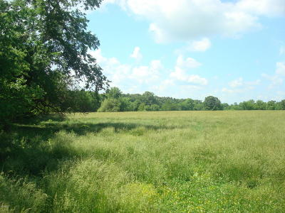 Granby MO Residential Lots & Land For Sale: $67,500